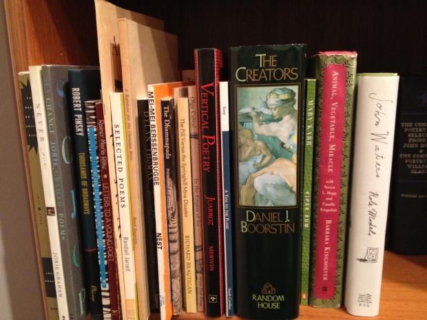 Bookshelves 009