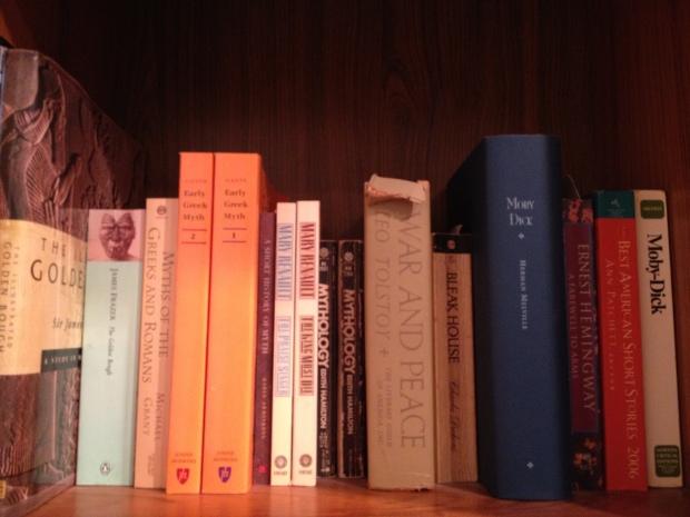 Bookshelves 010