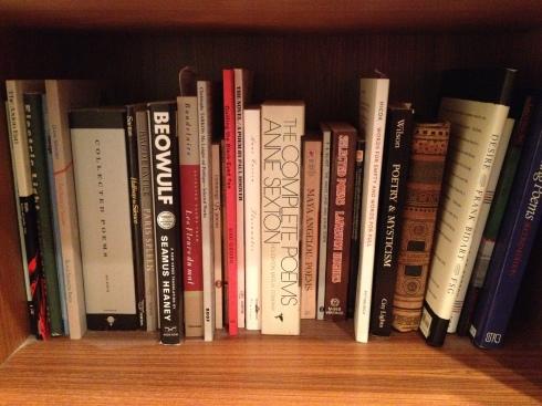 Bookshelves 012
