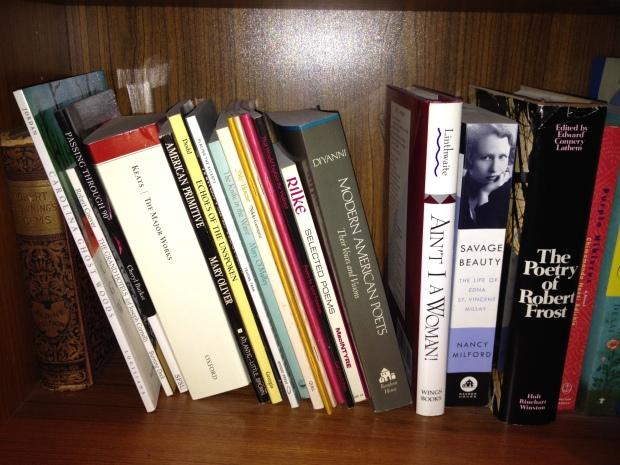 Bookshelves 013