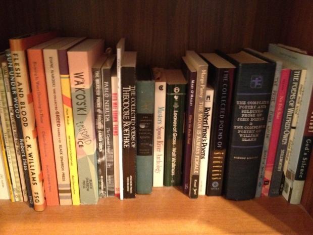Bookshelves 016