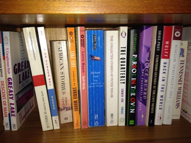 Bookshelves 018