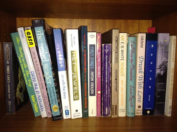 Bookshelves 019