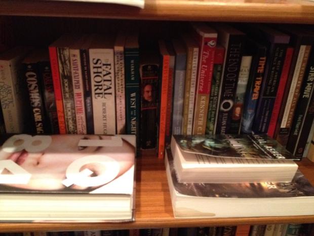 Bookshelves 025