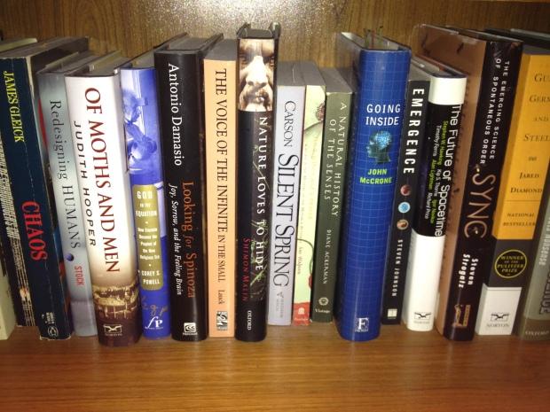 Bookshelves 026