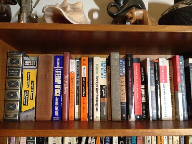 My gym bookshelves 006