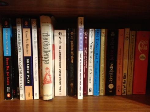 My gym bookshelves 008