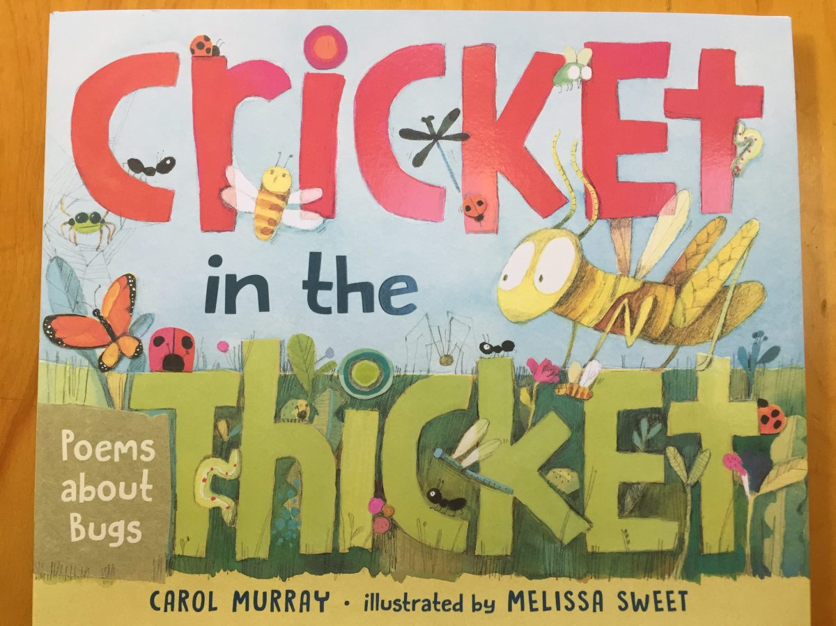 Cricket in the Thicket - Perfect Picture Book Friday